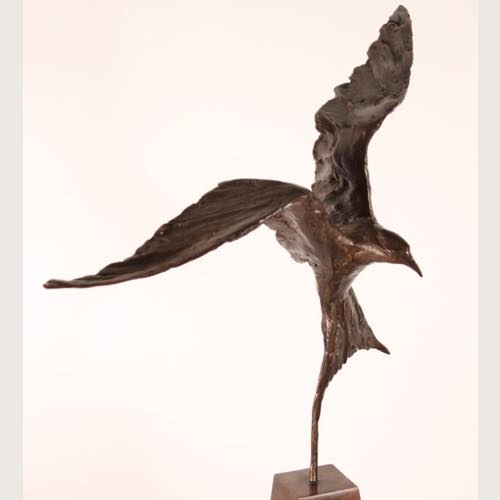 Tern Study a small sculpture in bronze by Kate Denton