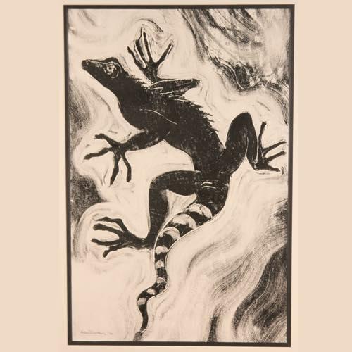 Iguana drawing by Kate Denton