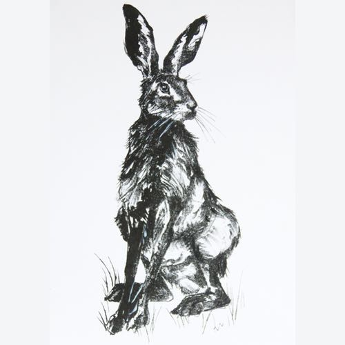 A Hare Lithograph by Kate Denton