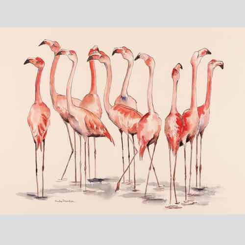 Pink Parade a drawing by Kate Denton